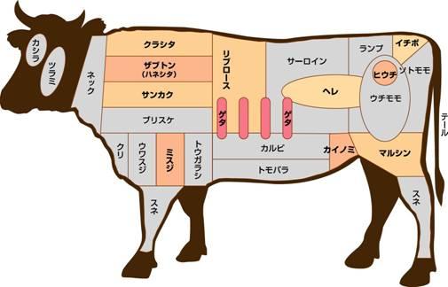 和牛 (お笑いコンビ)の画像 p1_33