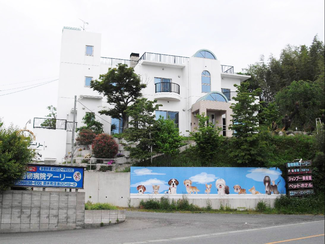 熊本県 菊池市 動物病院デーリー
