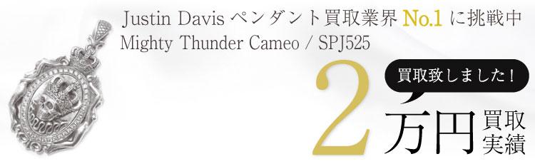 Mighty Thunder Cameo / SPJ525 / トップ / スカルマイティサンダーカメオ 2万買取 / 状態ランク:B 中古品-可