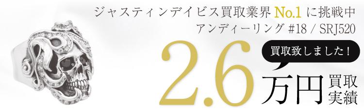 アンディーリング#18 / SRJ520 2.6万買取 / 状態ランク:B 中古品-可
