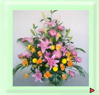 祝いギフト用花:アレンジメント