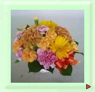 お祝いギフト用花:アレンジメント