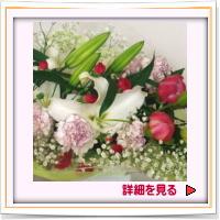 商品名:h-0047 誕生日・父の日に如何ですか!!:4.935円[税込]