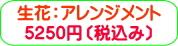 商品番号ZA-002 ギフト用花アレンジメント:5250円