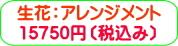 商品番号ZA-005 ギフト用花アレンジメント:15750円
