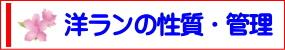 コチョウラン・シンピじゅームナドノ性質および管理方法