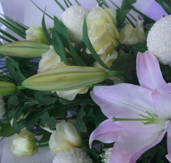 商品名:o-0041 お通夜・お彼岸に、花束 手頃でですよ菊を使い和風に如何ですか:4.750円[税込]