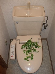 キヨミズキャンパス トイレ