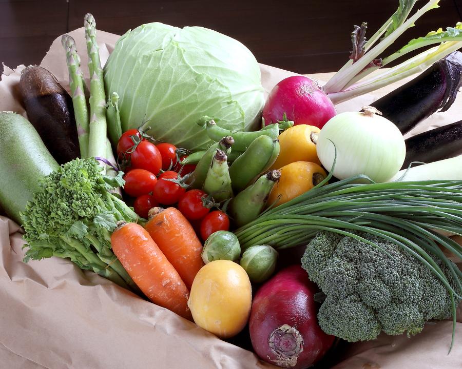 こだわりの旬野菜
