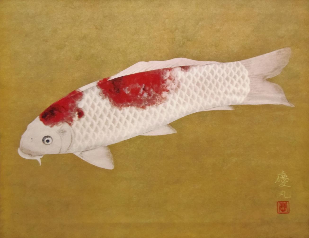 関山慶丸 鯉 日本画