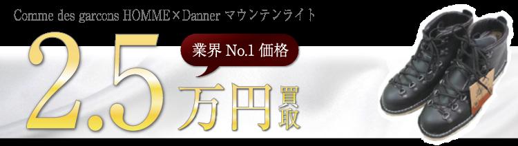 DANNER Comme des garcons HOMME×Danner マウンテンライト ブランド買取ライフ