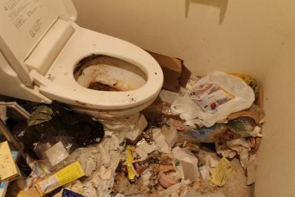 汚部屋 清掃