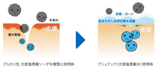 皮膚拡大図2
