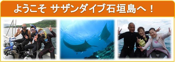 楽しいダイビングならサザンダイブ石垣島