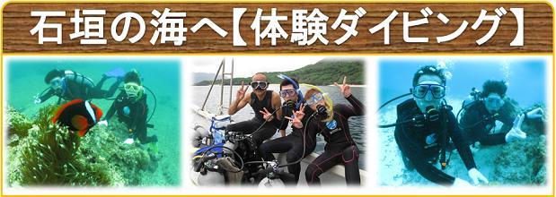 体験ダイビングで石垣島に潜る