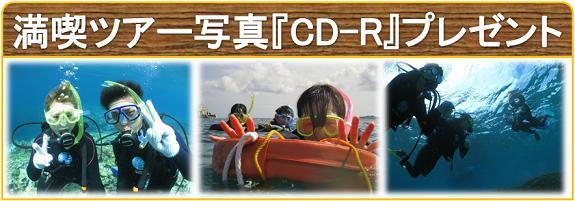 体験ツアー水中写真CD-Rプレゼント
