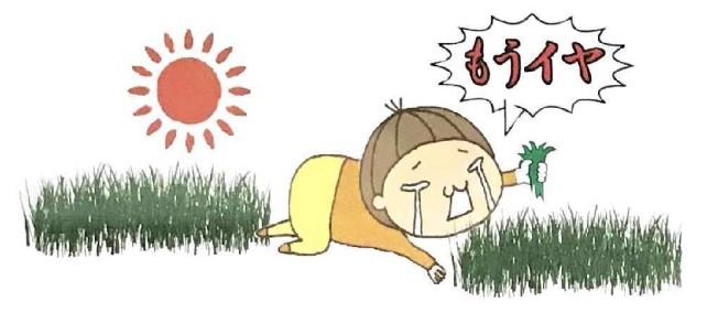 防草 草なしくん 雑草 処理