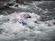 長良川をお楽しみ下さい