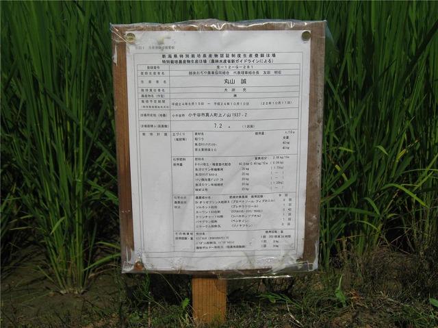 特別栽培米,魚沼産コシヒカリ,産地直送,激安,非BL