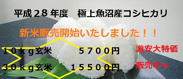28年度新米,魚沼産コシヒカリ,激安,最高級